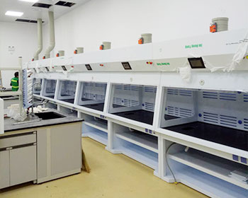 武汉顶益食品有限公司复式净气型通风柜应用案例